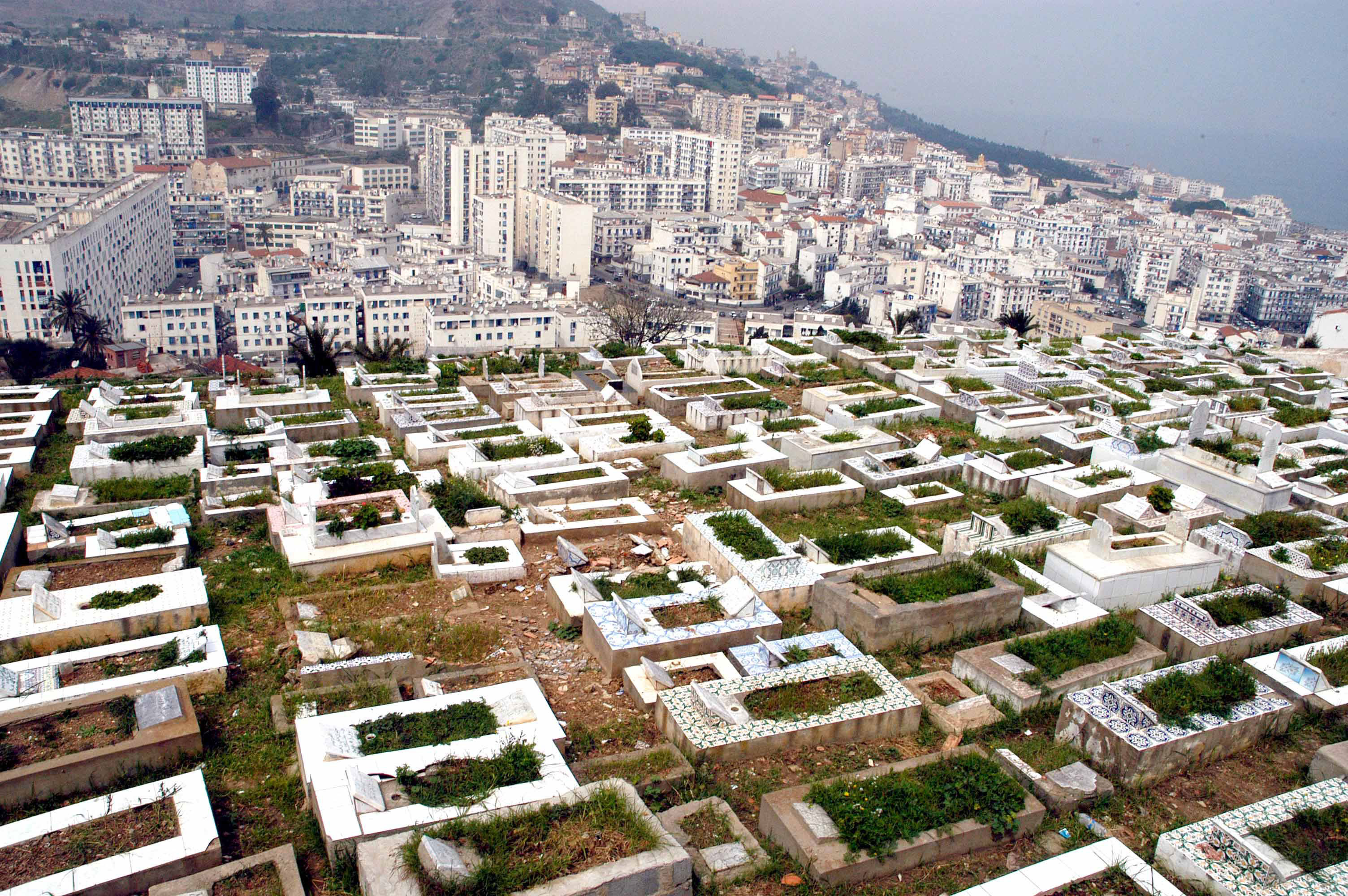 مقابر الجزائر تضيق بموتاها