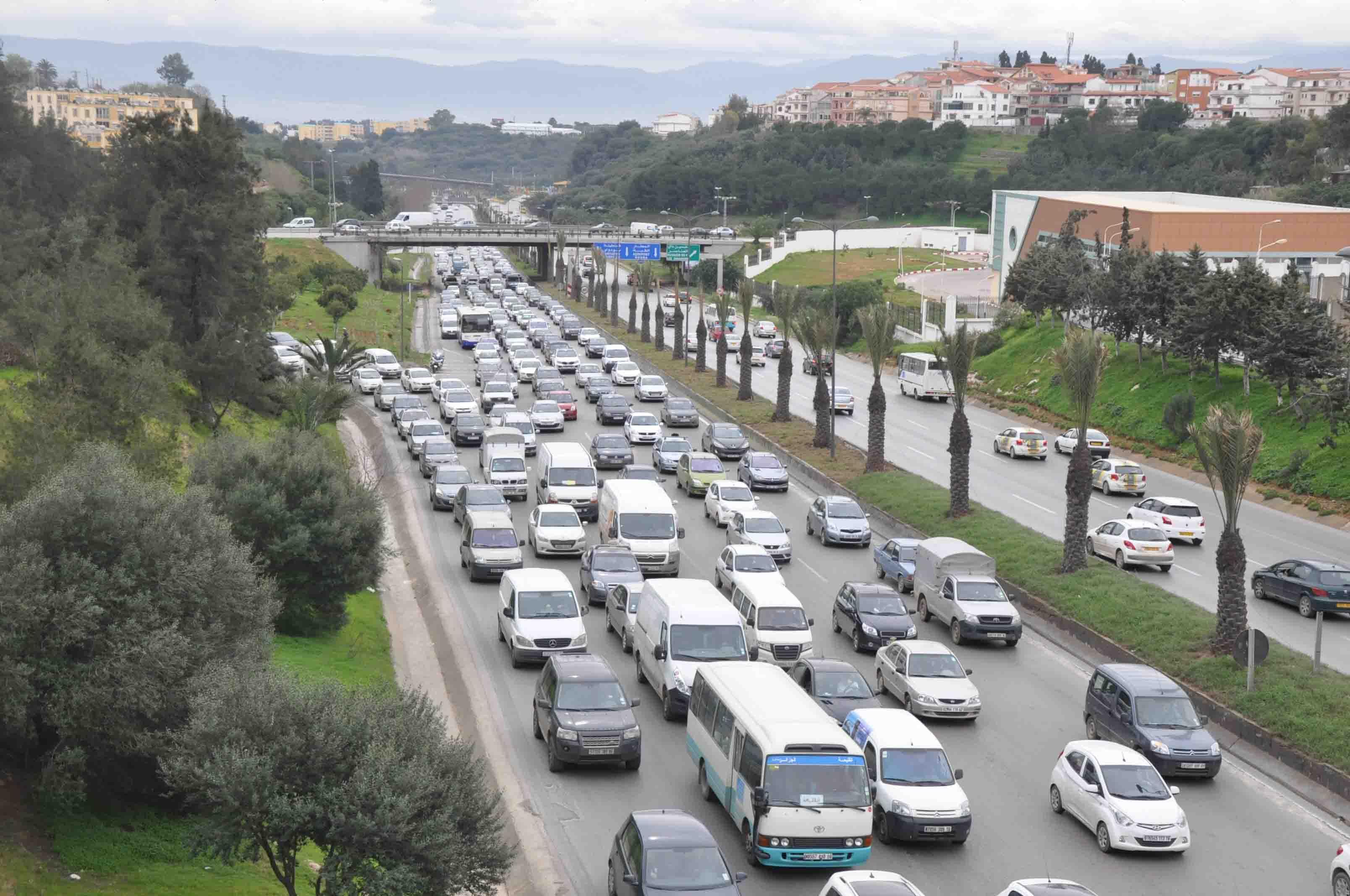 هذا هو حجم حظيرة السيارات في الجزائر